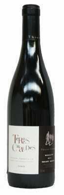 Domaine des Roches Neuves Saumur Champigny Terres Chaudes Vin rouge 2012
